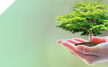 Solventes Ecológicos